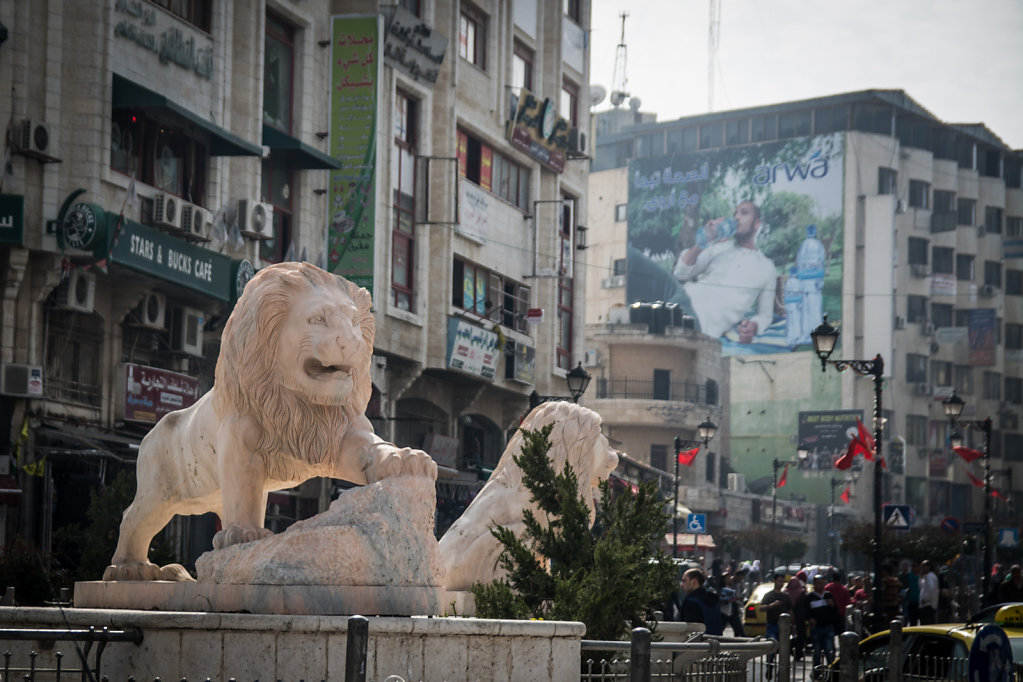 Lion on Roundabout