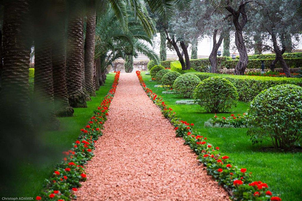 Inside the gardens 1