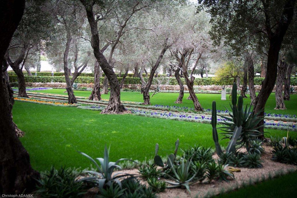 Inside the gardens 2
